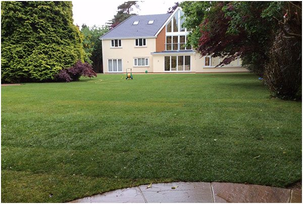PageLines-garden-landscaping1.jpg